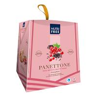 NUTRIFREE PANETTONE RISO/FRUT